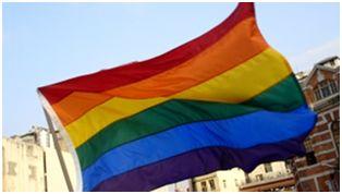 ¿Puede explicar la epigenética la homosexualidad?