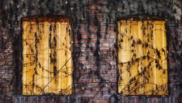 El debate sobre la futilidad médica: aportes de la moral cristiana
