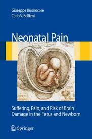 Neonatal Pain Suffering, Pain and Risk of Brain Damage in the Fetus and Newborn