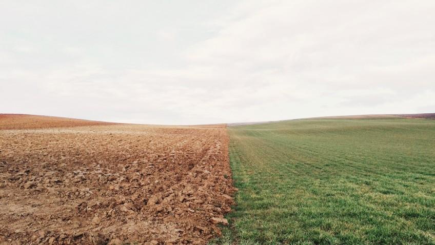 Biocracia y la encíclica Laudato Si'. Un breve comentario desde el punto de vista genético