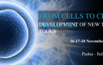 Third International Congress on Responsible Stem Cell Research