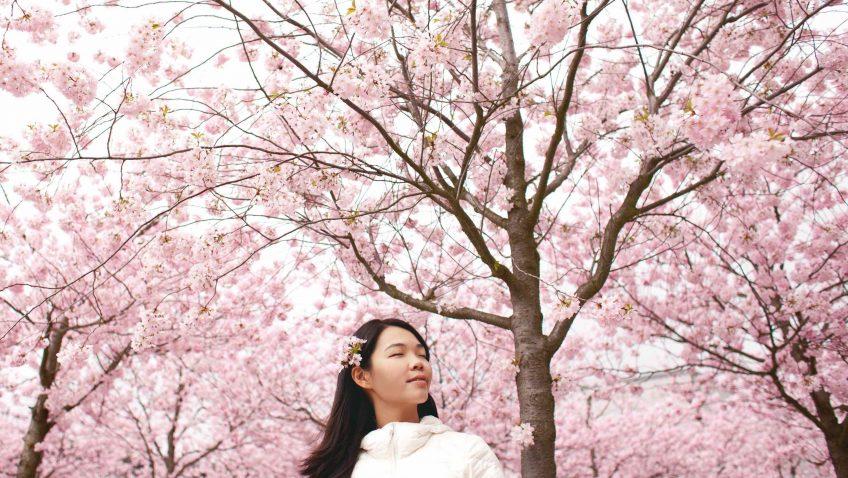 Ecofeminismo: una nueva manera de mirar la naturaleza